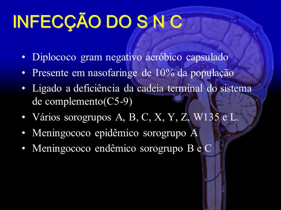 INFECÇÃO DO S N C Diplococo gram negativo aeróbico capsulado