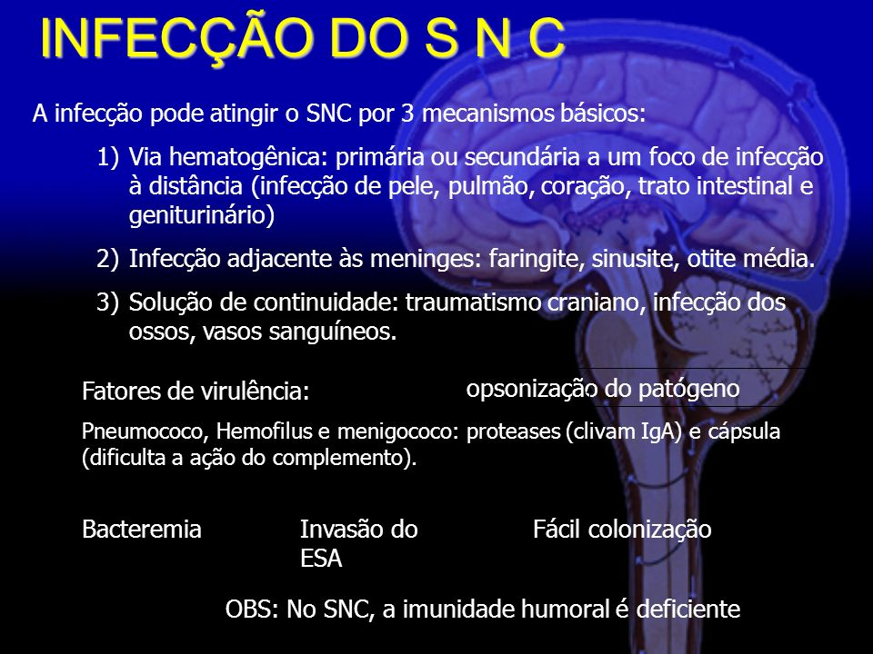 INFECÇÃO DO S N C A infecção pode atingir o SNC por 3 mecanismos básicos: