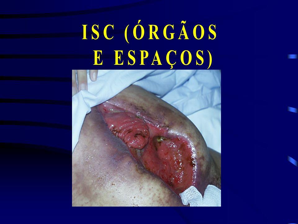 ISC (ÓRGÃOS E ESPAÇOS)