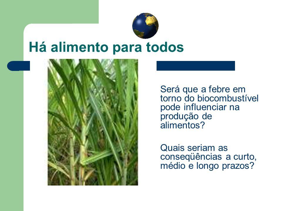 Há alimento para todos Será que a febre em torno do biocombustível pode influenciar na produção de alimentos