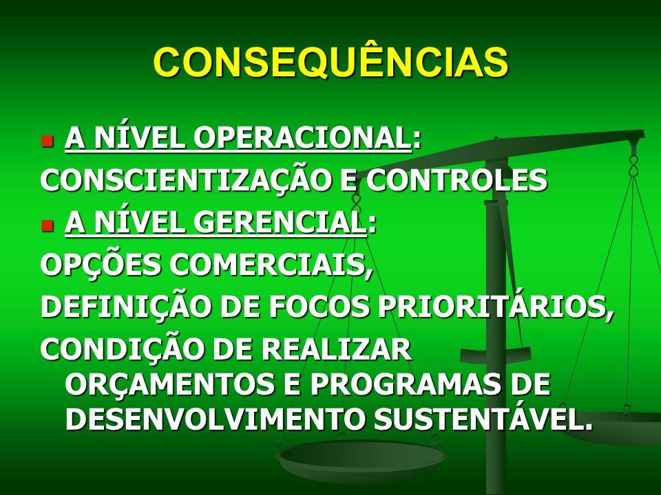 CONSEQUÊNCIAS A NÍVEL OPERACIONAL: CONSCIENTIZAÇÃO E CONTROLES