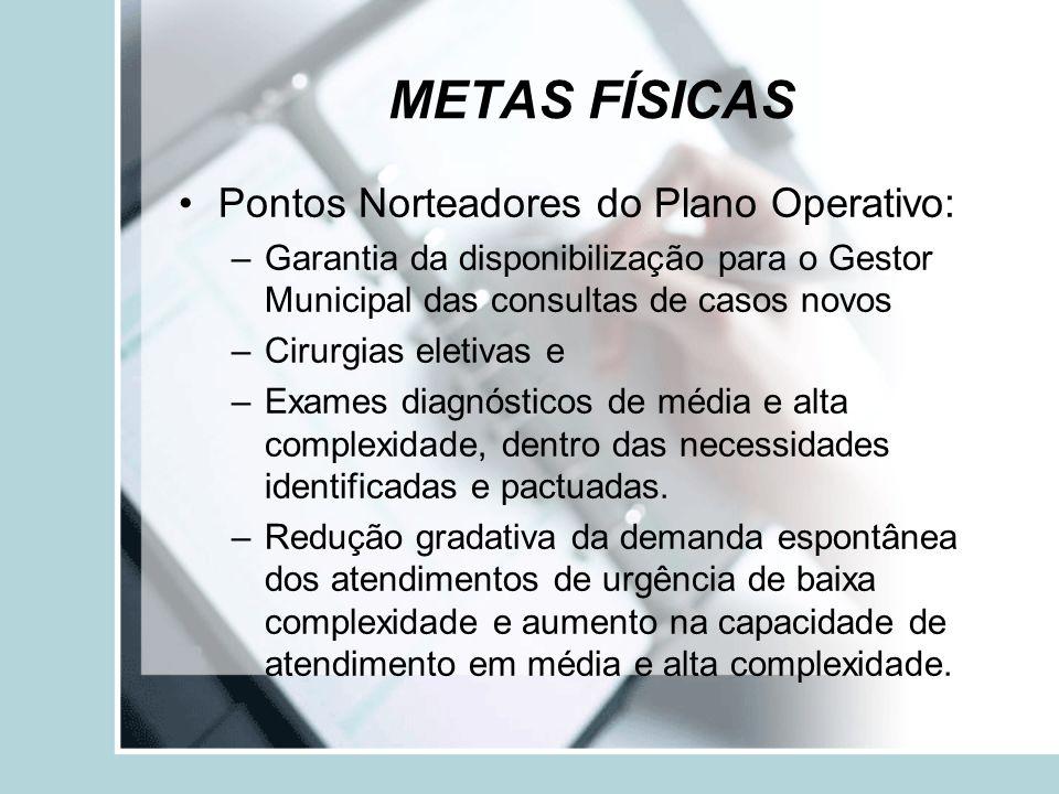 METAS FÍSICAS Pontos Norteadores do Plano Operativo: