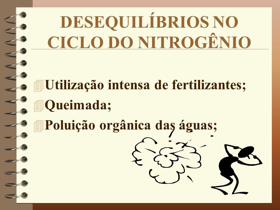 DESEQUILÍBRIOS NO CICLO DO NITROGÊNIO