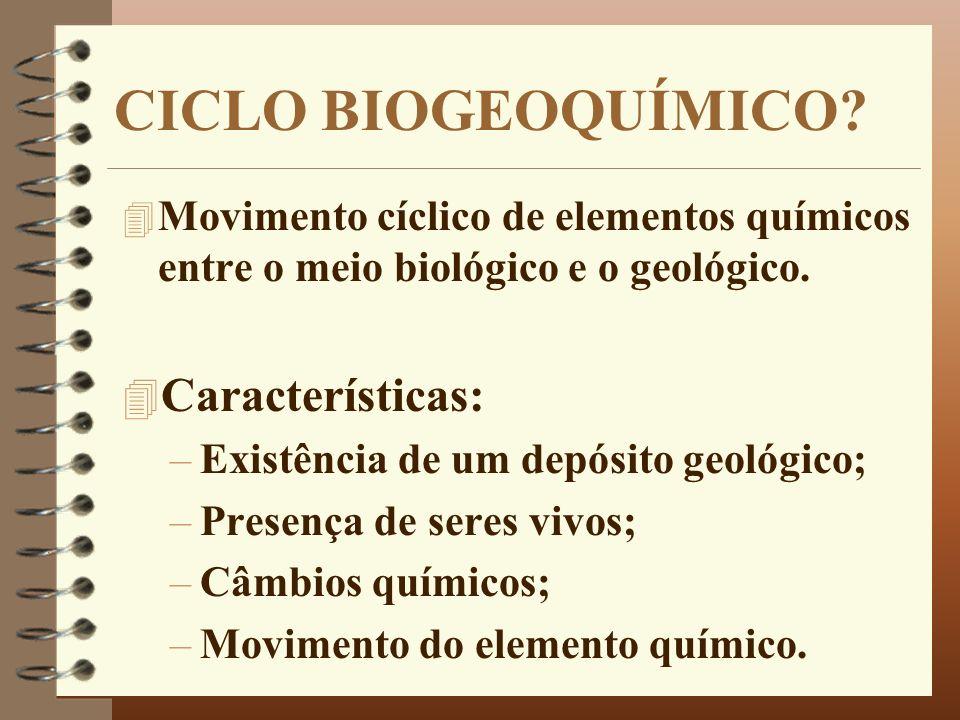 CICLO BIOGEOQUÍMICO Características: