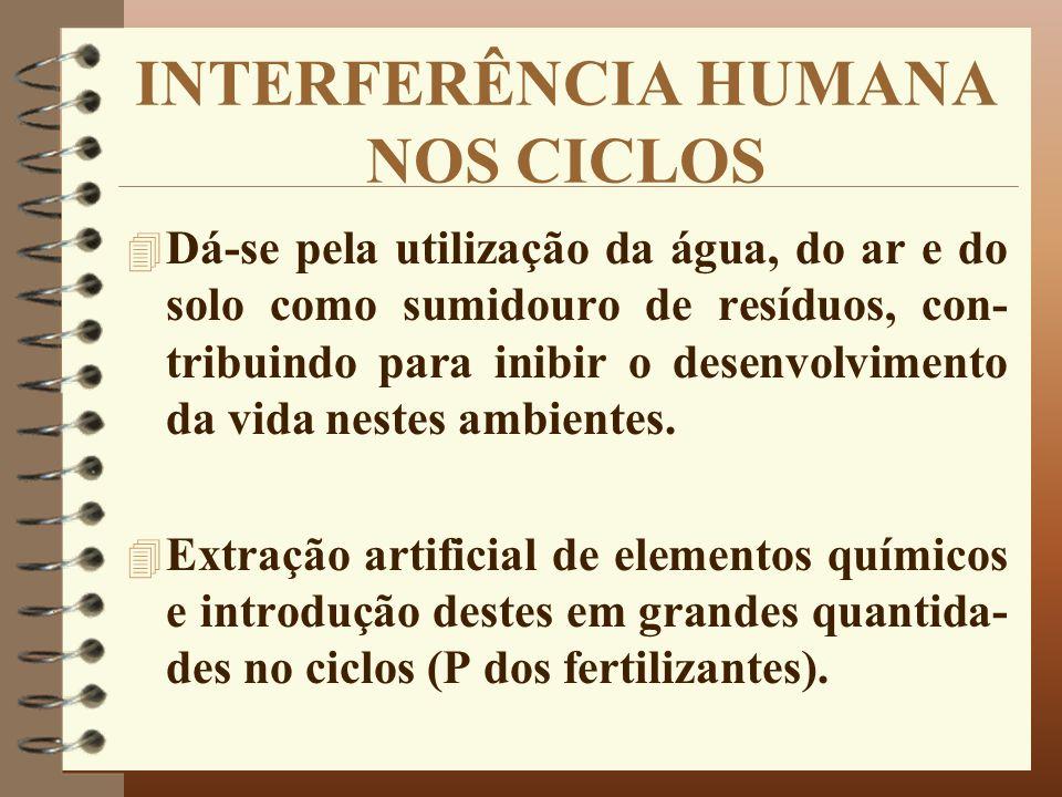 INTERFERÊNCIA HUMANA NOS CICLOS
