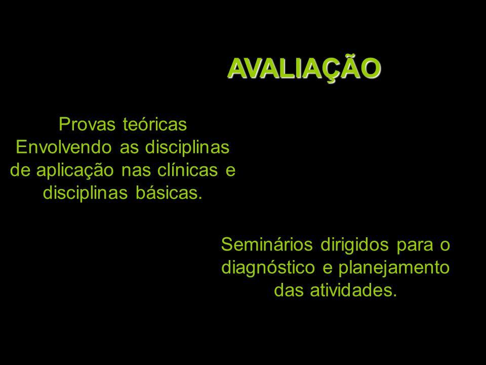 Seminários dirigidos para o diagnóstico e planejamento das atividades.