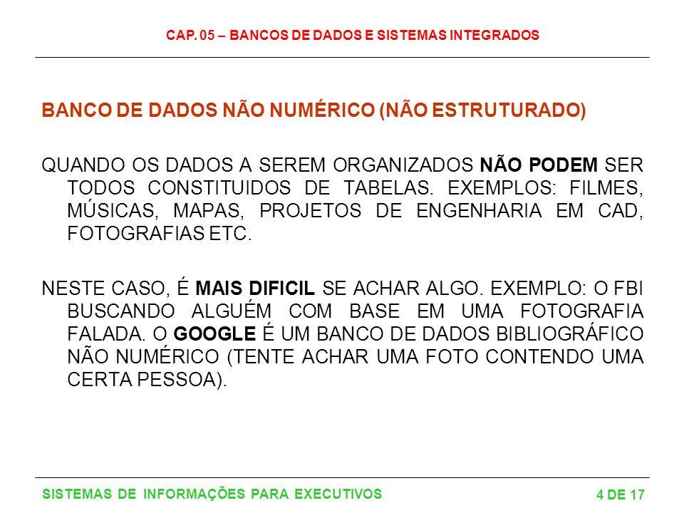 BANCO DE DADOS NÃO NUMÉRICO (NÃO ESTRUTURADO)