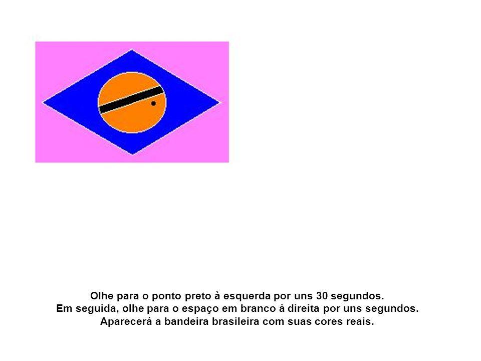 Aparecerá a bandeira brasileira com suas cores reais.