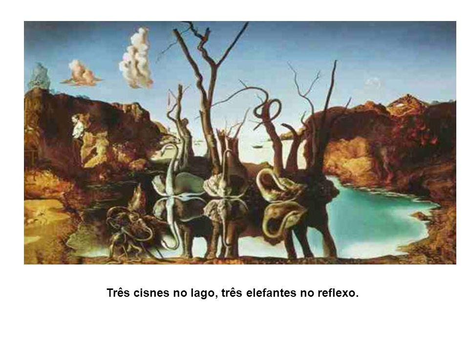 Três cisnes no lago, três elefantes no reflexo.