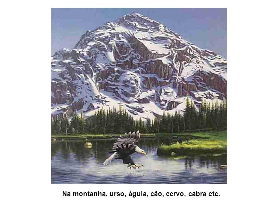 Na montanha, urso, águia, cão, cervo, cabra etc.
