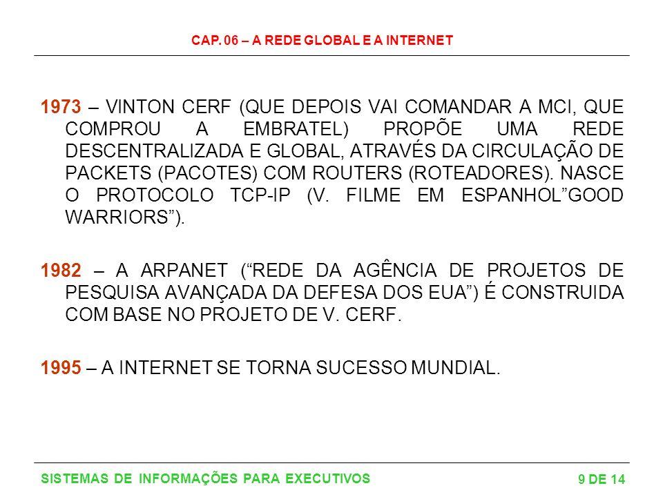 1995 – A INTERNET SE TORNA SUCESSO MUNDIAL.