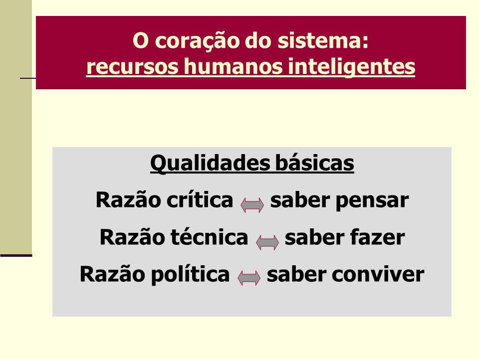 O coração do sistema: recursos humanos inteligentes