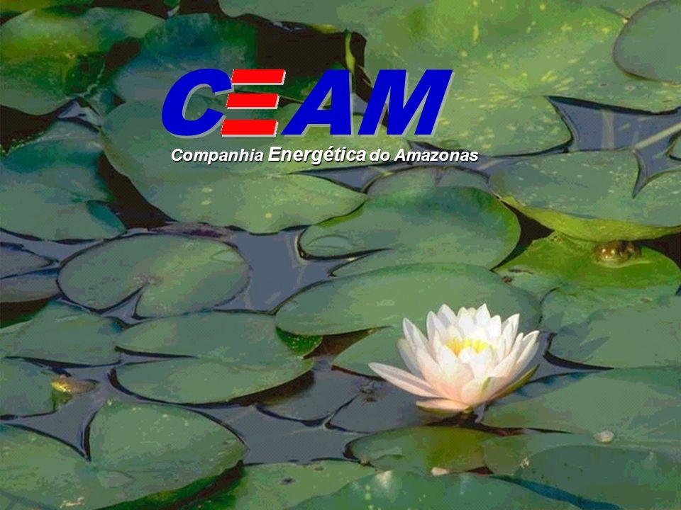 C AM Companhia Energética do Amazonas
