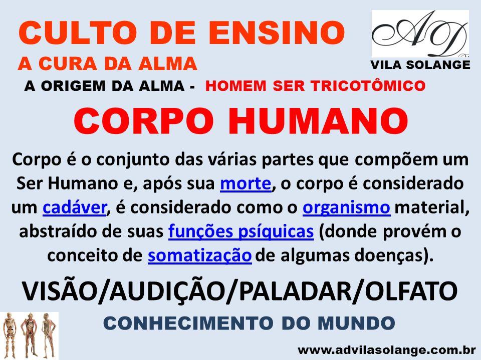 VISÃO/AUDIÇÃO/PALADAR/OLFATO