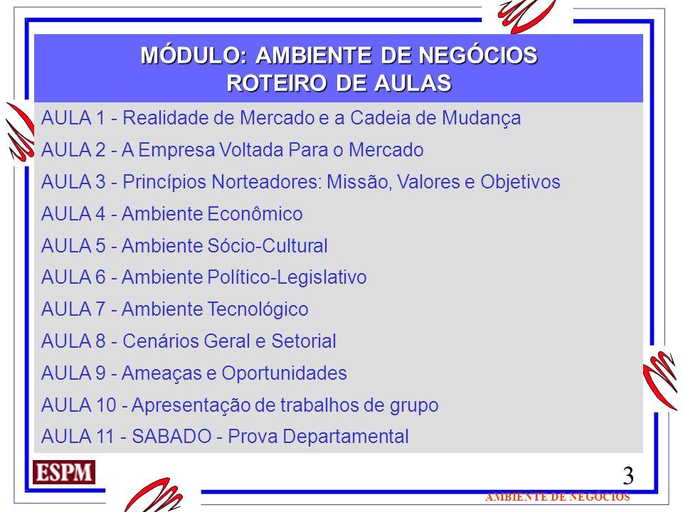 MÓDULO: AMBIENTE DE NEGÓCIOS ROTEIRO DE AULAS