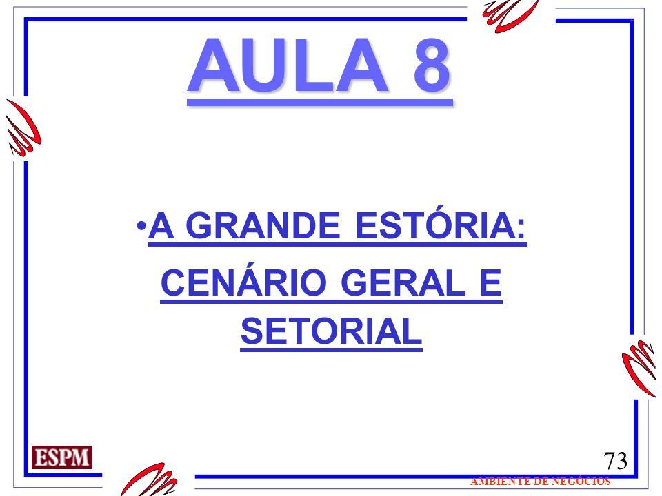 A GRANDE ESTÓRIA: CENÁRIO GERAL E SETORIAL