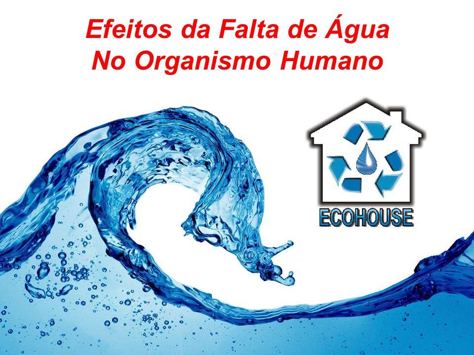 Efeitos da Falta de Água No Organismo Humano