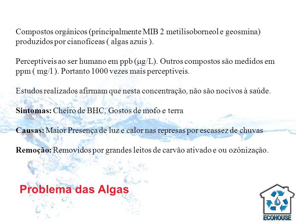 Compostos orgânicos (principalmente MIB 2 metilisoborneol e geosmina) produzidos por cianofíceas ( algas azuis ).