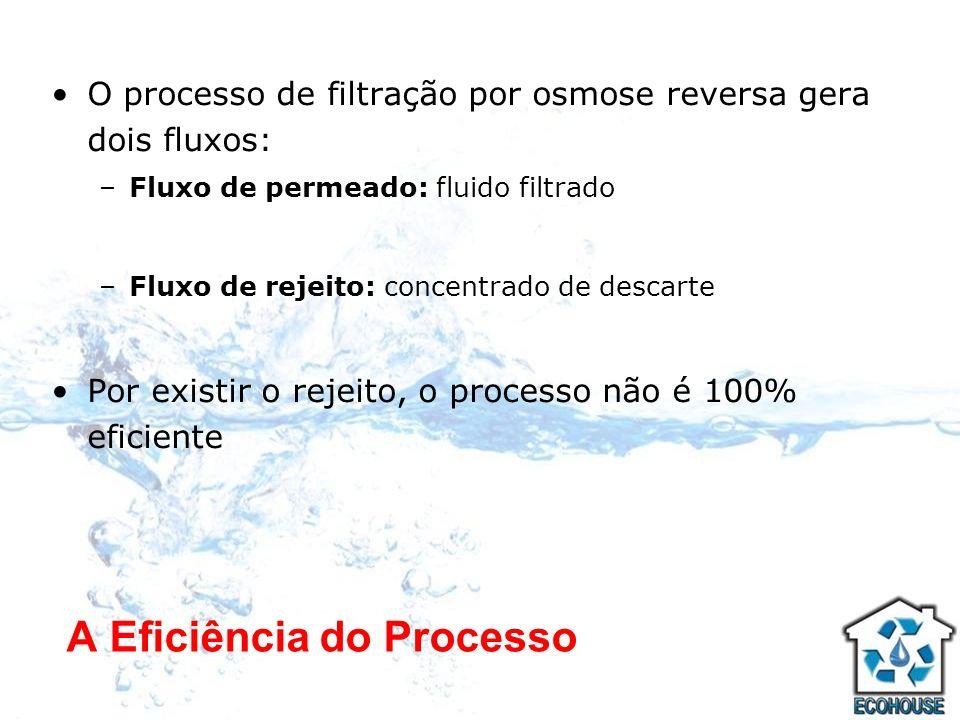 A Eficiência do Processo