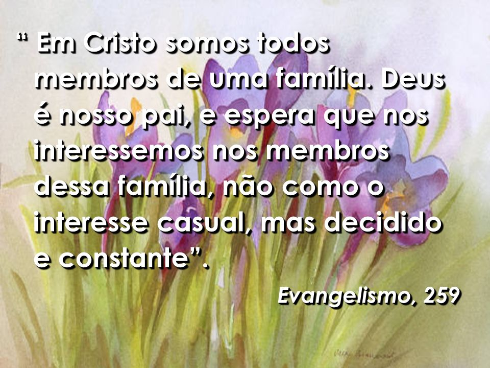 Em Cristo somos todos membros de uma família