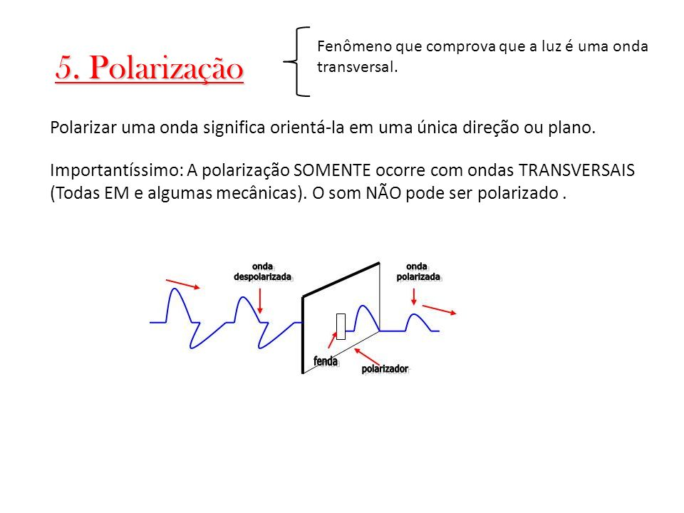 Fenômeno que comprova que a luz é uma onda transversal.