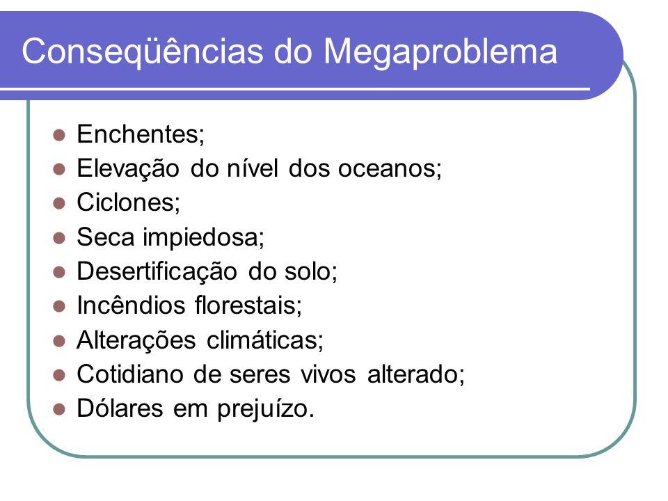 Conseqüências do Megaproblema