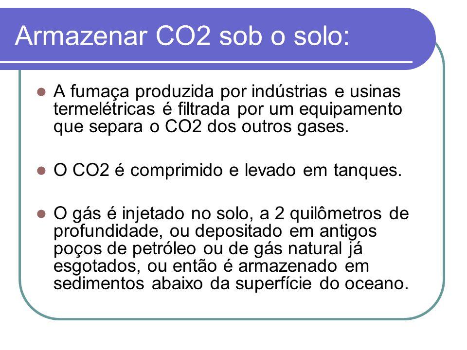 Armazenar CO2 sob o solo: