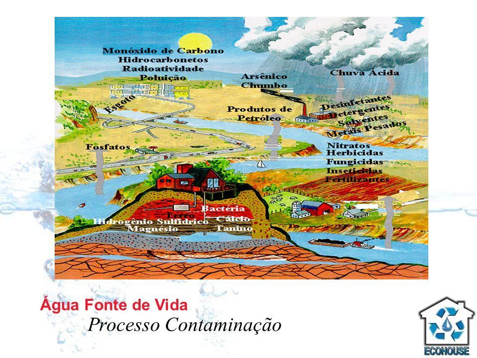 Processo Contaminação