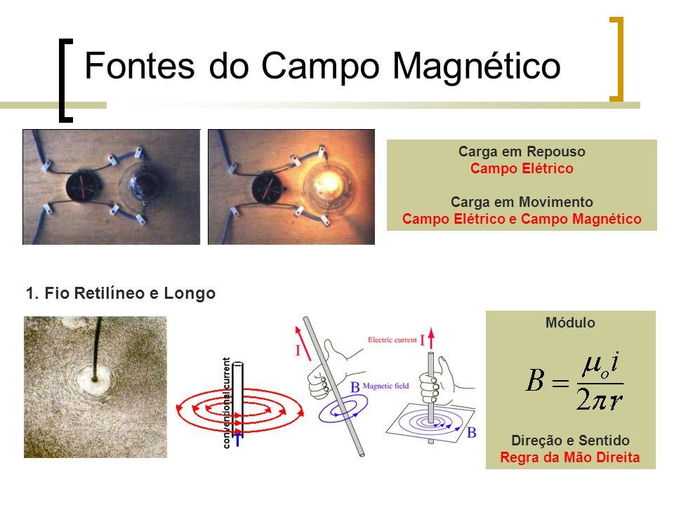 Campo Elétrico e Campo Magnético