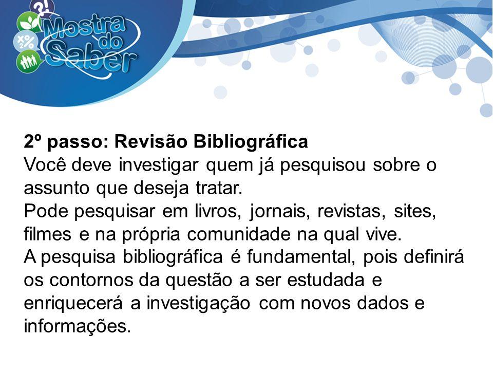 2º passo: Revisão Bibliográfica