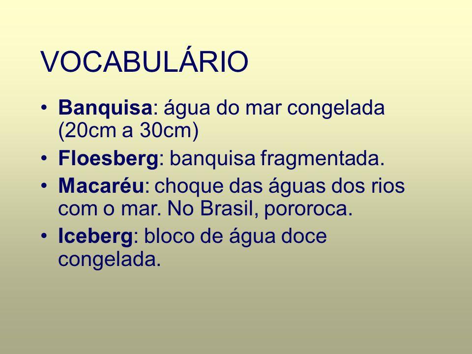 VOCABULÁRIO Banquisa: água do mar congelada (20cm a 30cm)