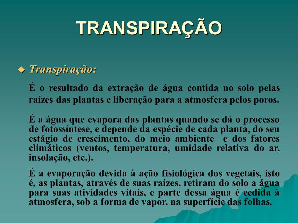 TRANSPIRAÇÃO Transpiração: