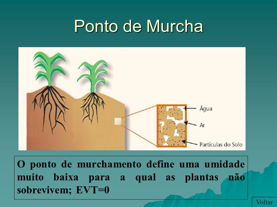 Ponto de MurchaO ponto de murchamento define uma umidade muito baixa para a qual as plantas não sobrevivem; EVT=0.