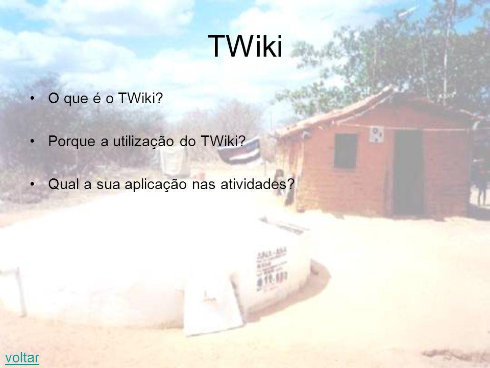TWiki O que é o TWiki Porque a utilização do TWiki