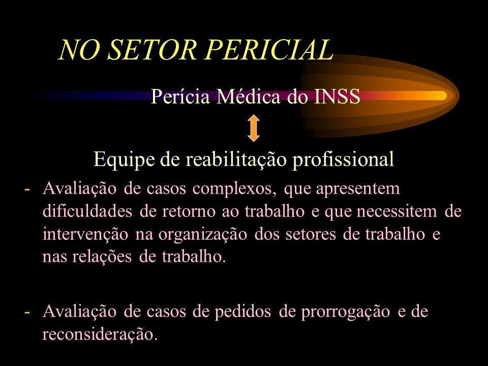 Equipe de reabilitação profissional