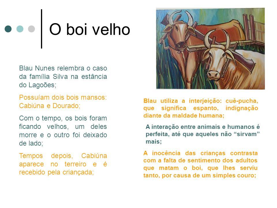 O boi velho Blau Nunes relembra o caso da família Silva na estância do Lagoões; Possuíam dois bois mansos: Cabiúna e Dourado;