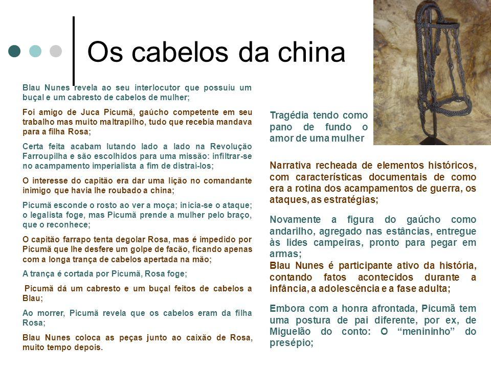 Os cabelos da china Blau Nunes revela ao seu interlocutor que possuiu um buçal e um cabresto de cabelos de mulher;
