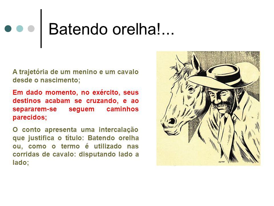Batendo orelha!... A trajetória de um menino e um cavalo desde o nascimento;