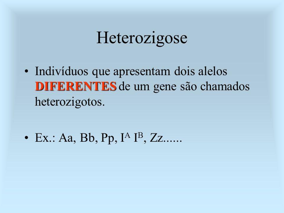 Heterozigose Indivíduos que apresentam dois alelos DIFERENTES de um gene são chamados heterozigotos.
