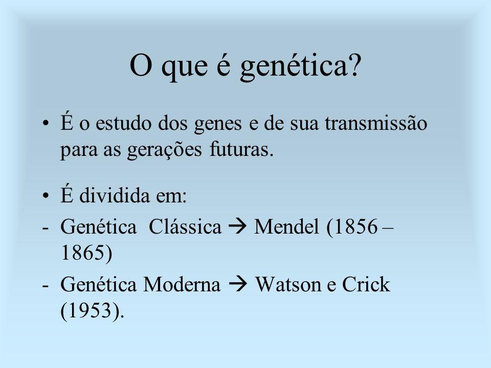 O que é genética É o estudo dos genes e de sua transmissão para as gerações futuras. É dividida em: