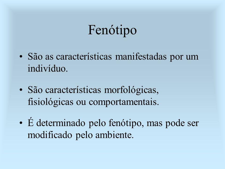 Fenótipo São as características manifestadas por um indivíduo.