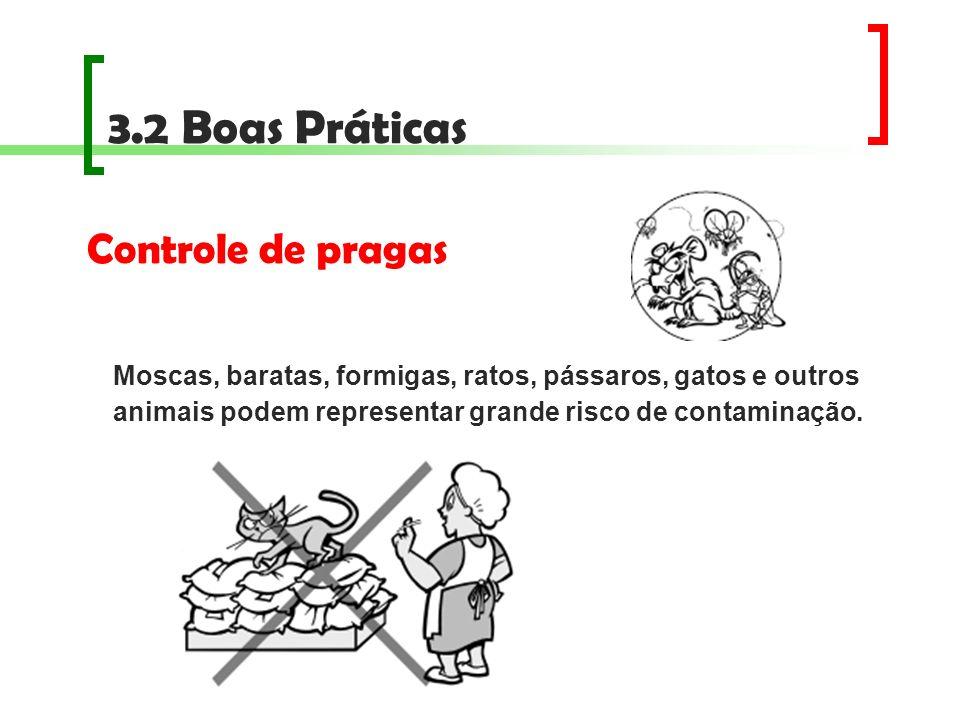 3.2 Boas Práticas Controle de pragas