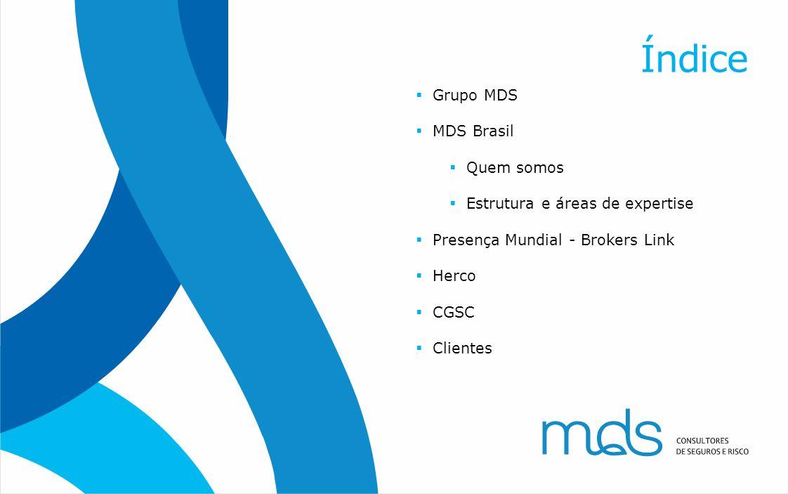 Índice Grupo MDS MDS Brasil Quem somos Estrutura e áreas de expertise