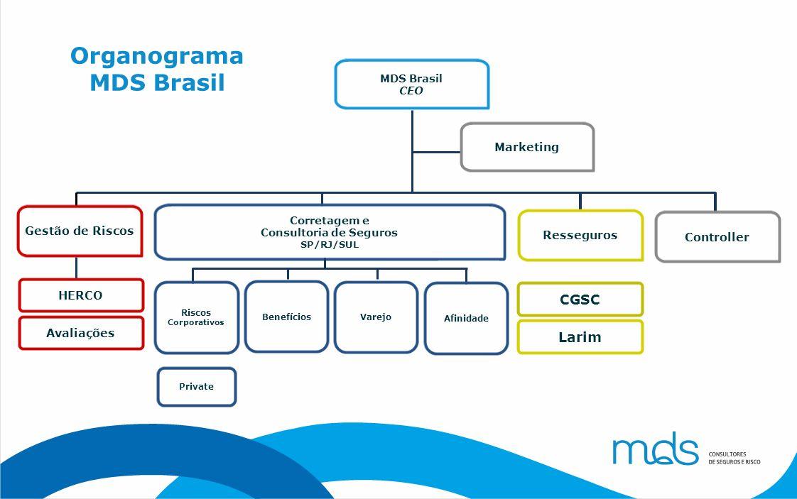 Organograma MDS Brasil