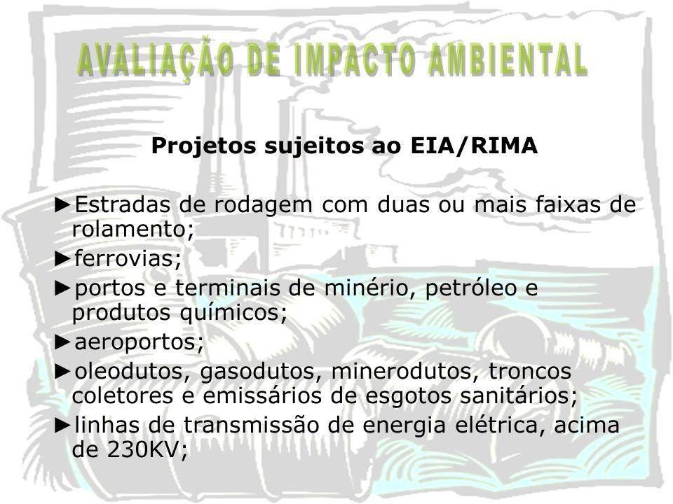 Projetos sujeitos ao EIA/RIMA