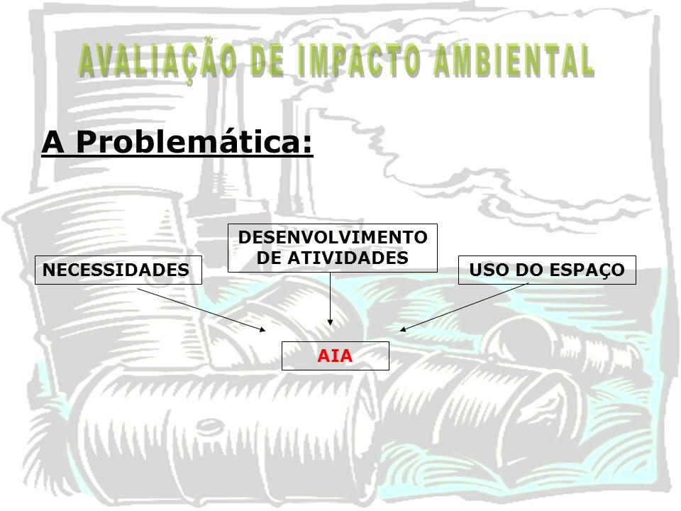 DESENVOLVIMENTO DE ATIVIDADES