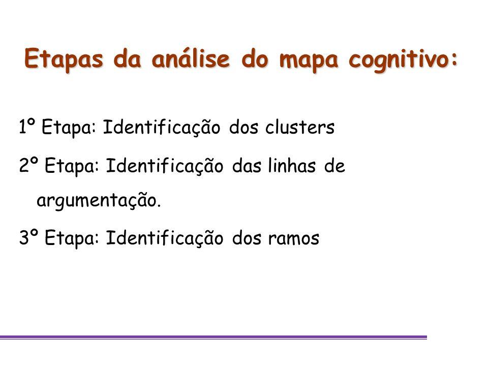 Etapas da análise do mapa cognitivo: