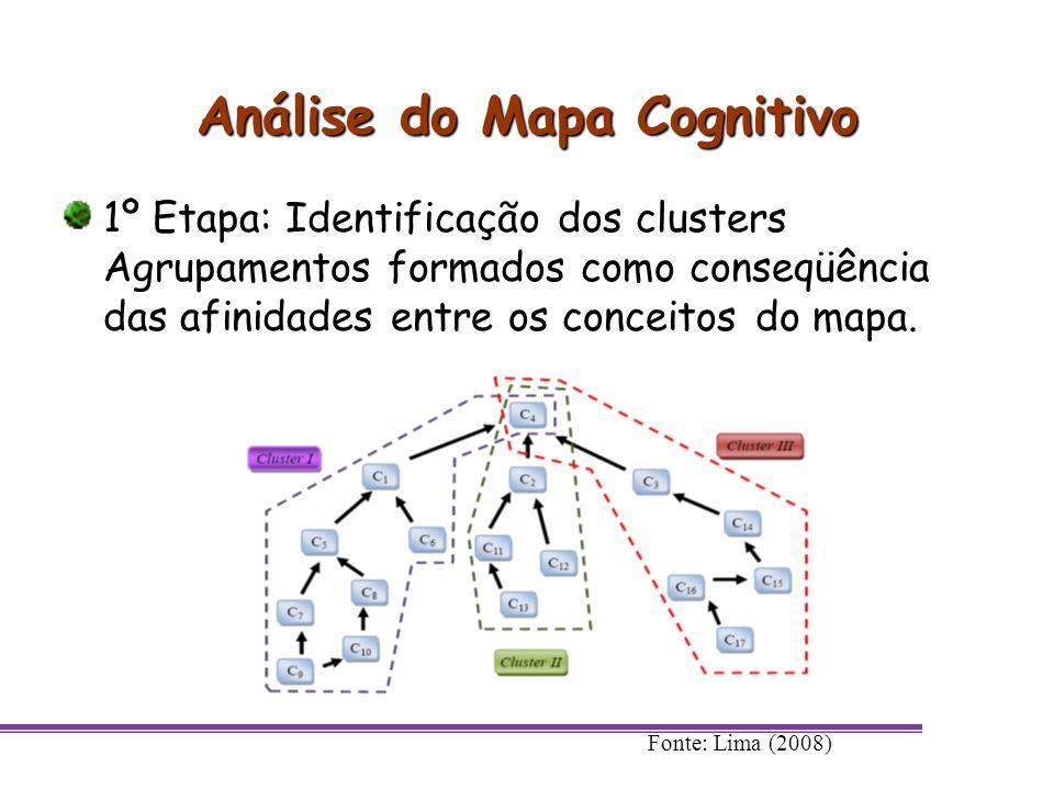 Análise do Mapa Cognitivo