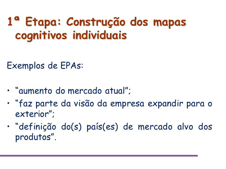 1ª Etapa: Construção dos mapas cognitivos individuais