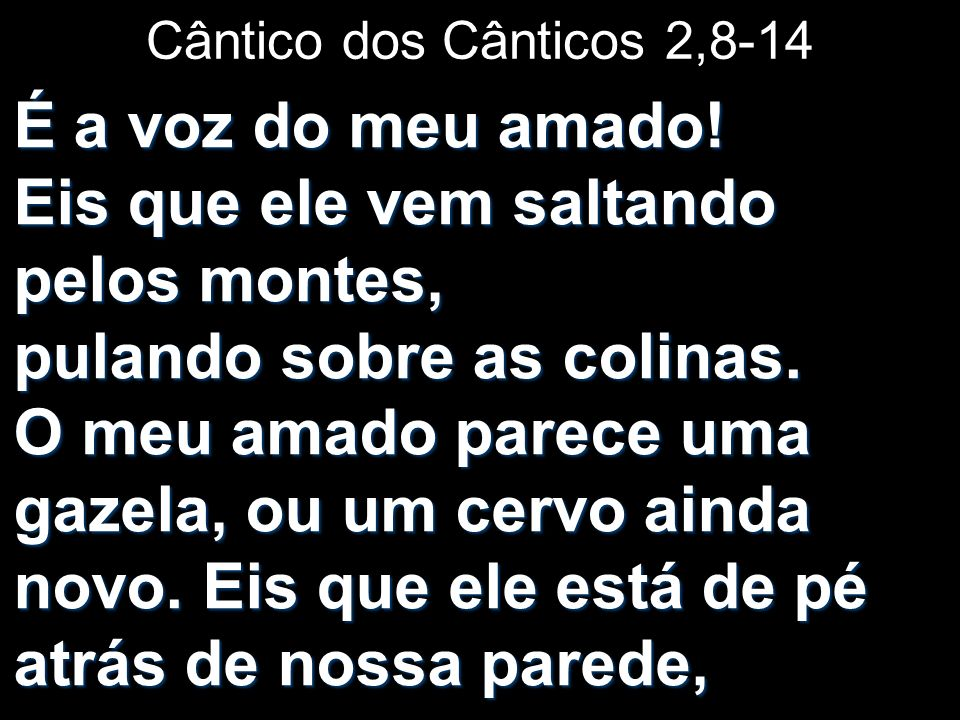 Cântico dos Cânticos 2,8-14